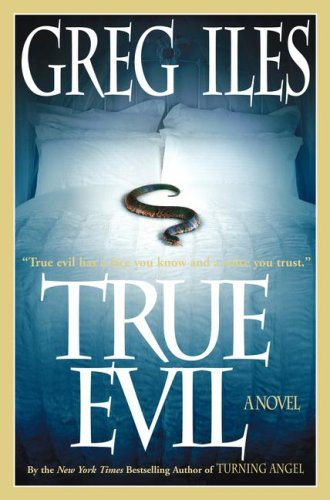 Image for True Evil: A Novel